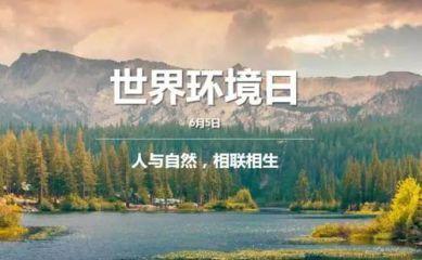 2020世界环境日标语横幅大全