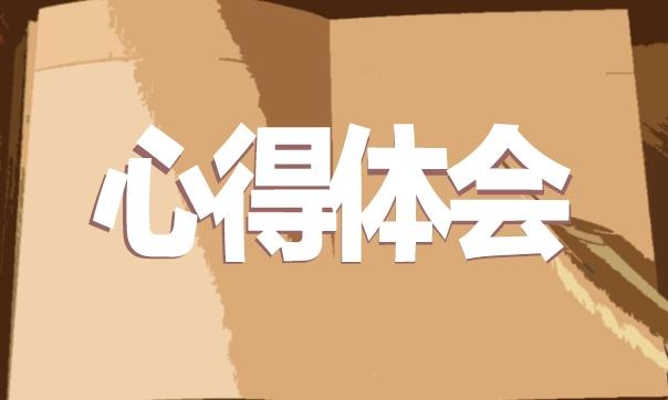 2019参加中国进口博览会感想体会大全