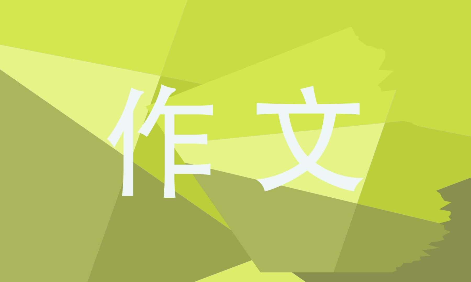 【问知】元宵之夜小学作文10篇