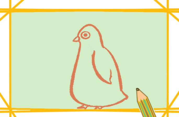 企鵝簡筆畫帶顏色原創教程