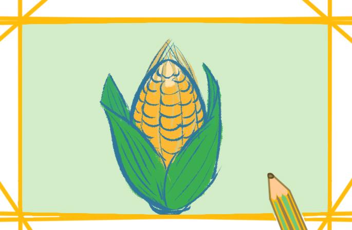 饱满的玉米上色简笔画图片教程步骤